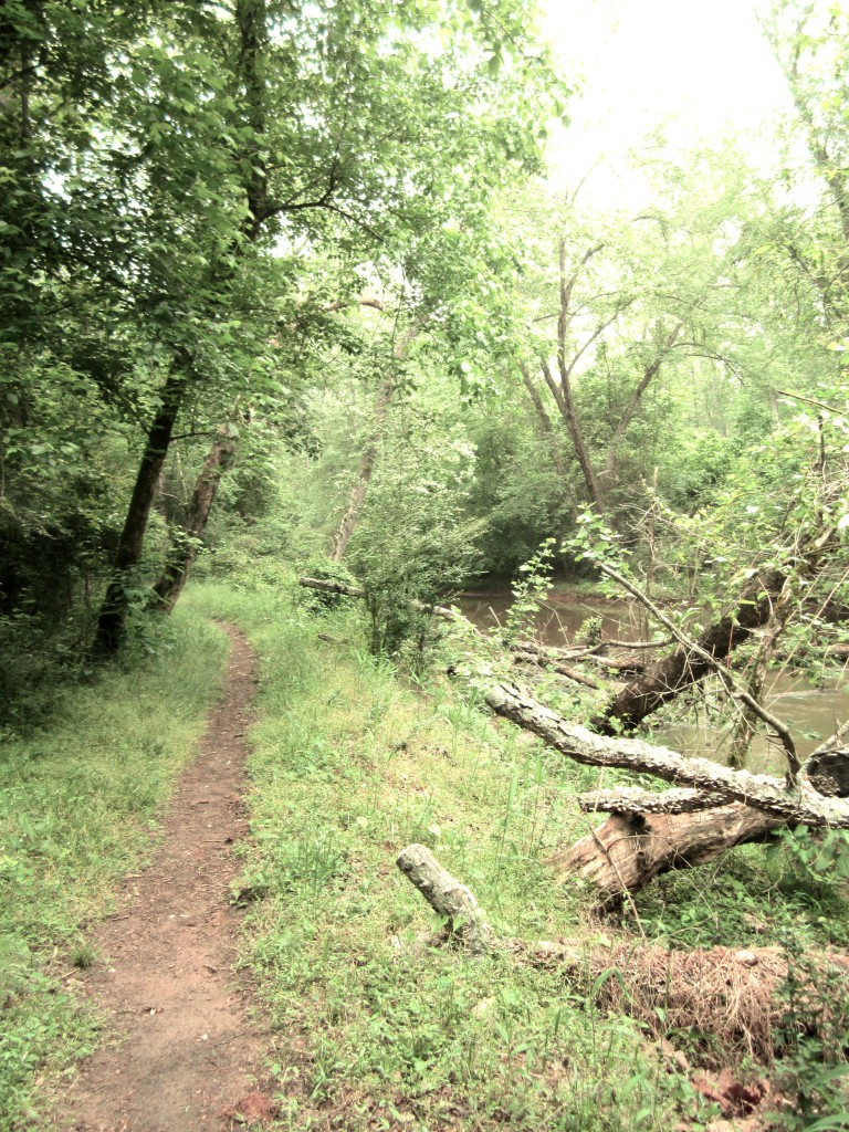 Cook's Greenway Trail | Best Places To Run in Athens, GA
