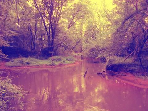 Rivers Converge