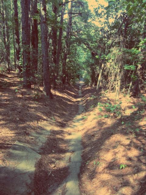 Culvert Entrance For Riverbend Trail Athens GA