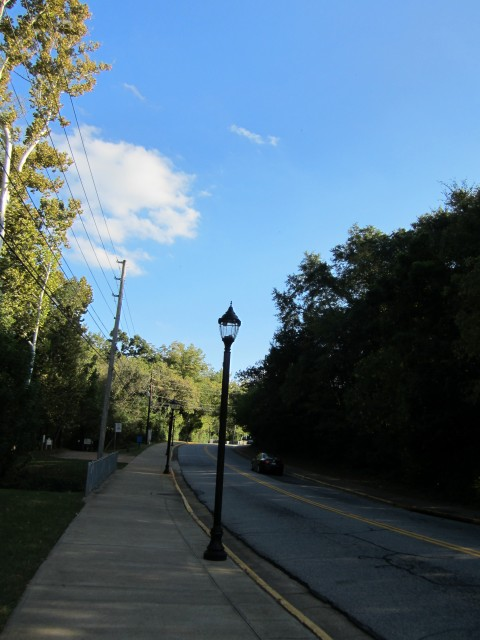 A Hill Along Willow St.