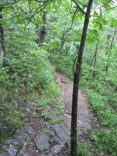 Muddy Appalachian Trail