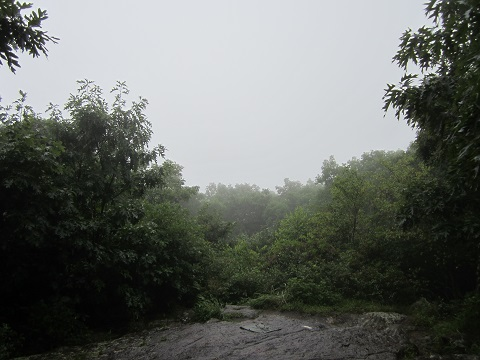 The Amazing View from Springer Mountain