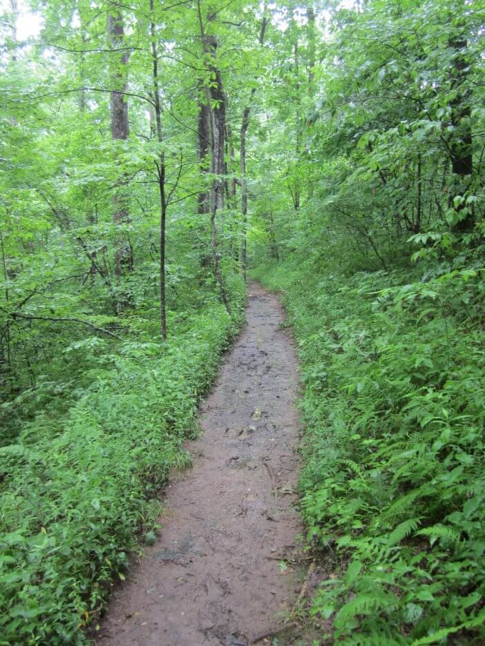 along-the-appalachian-trail-in-georgia_9651645364_o