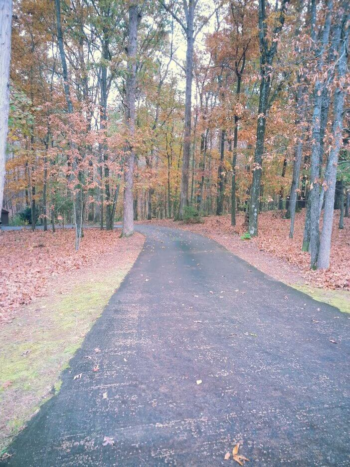 Driveway in the Fall 1