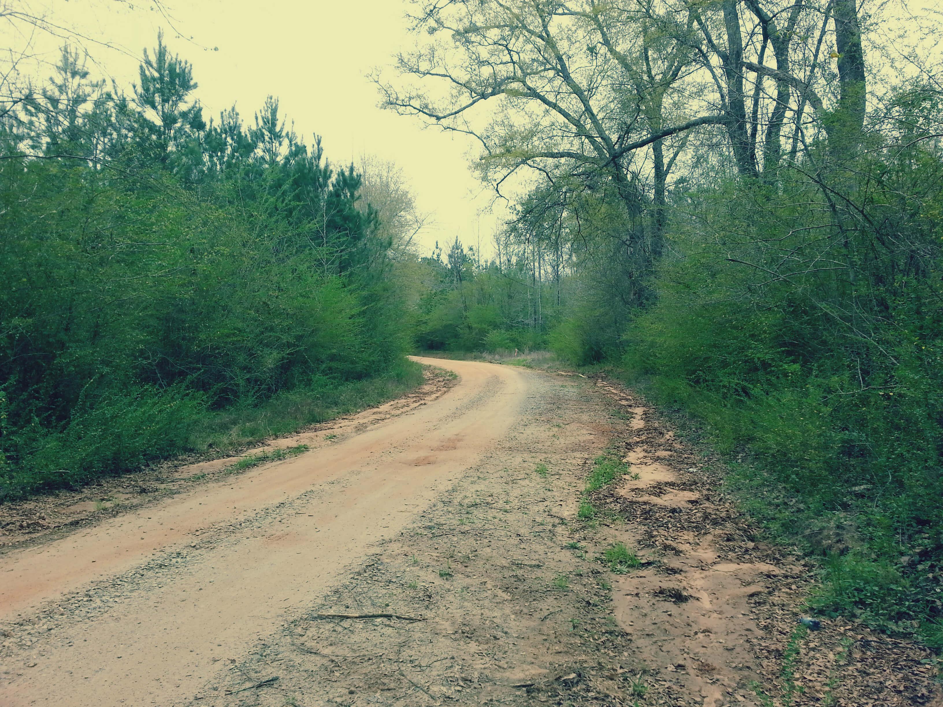 Rural Oglethorpe County