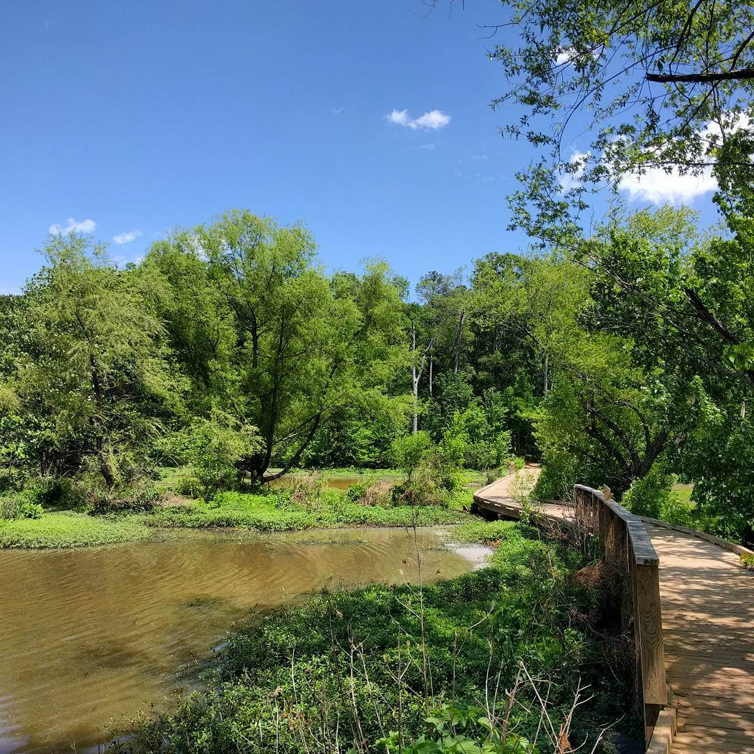 Earth Day at Constitution Lakes