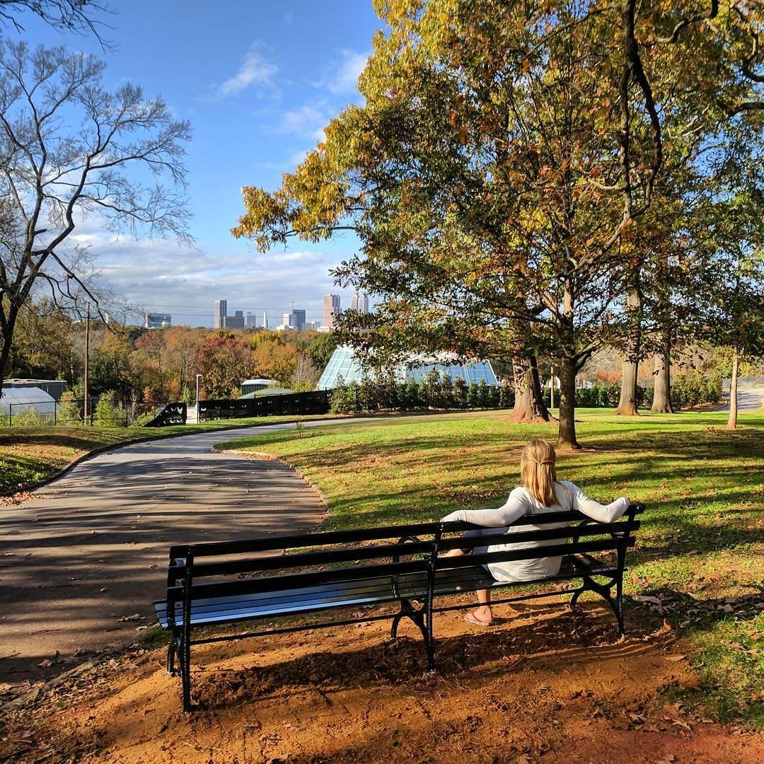 Grant Park Skyline Bench