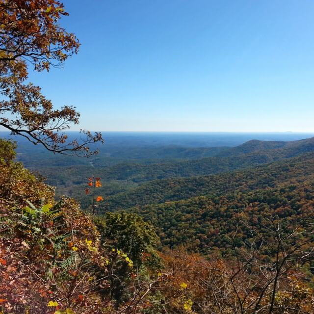 Springer Mountain View