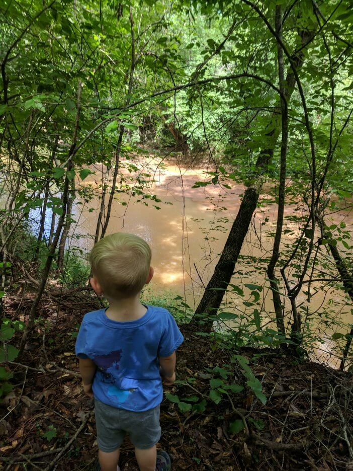 Hiking Hitchiti Trail 4