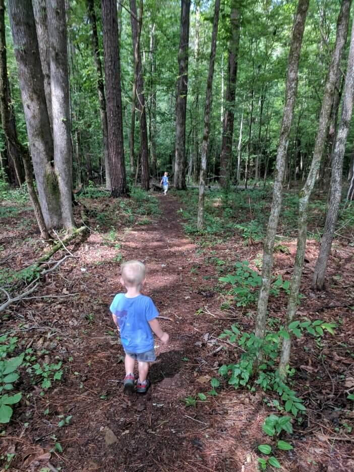 Hiking Hitchiti Trail 3