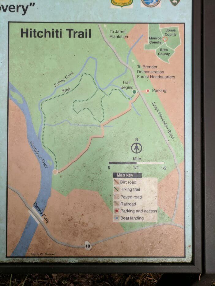 Hiking Hitchiti Trail 2