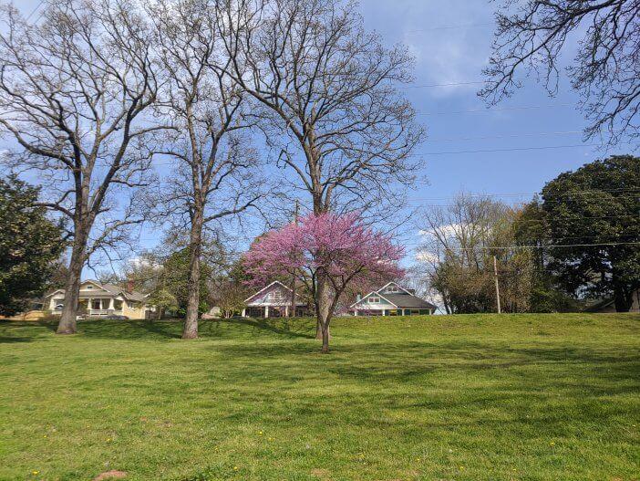 Grant Park Spring
