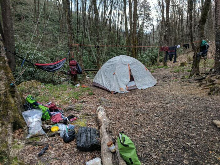 Hiking Forney Creek at the Great Smoky Mountains National Park 4