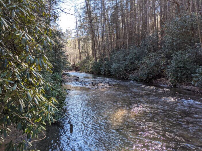 Cooper-Creek-5a