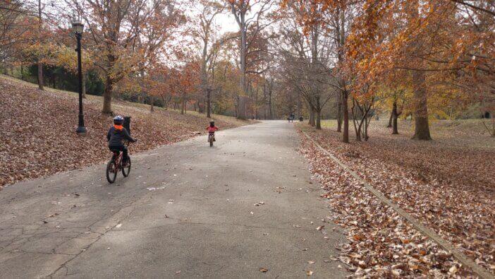 Fall in Grant Park 1