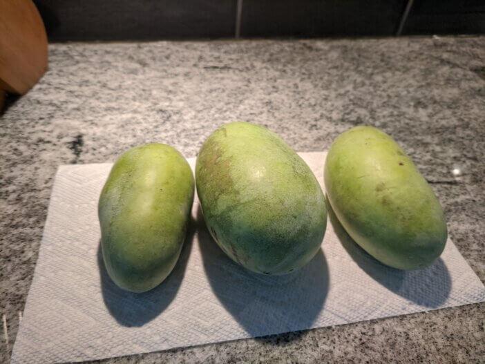 Finding & Eating Paw Paw Fruit 1
