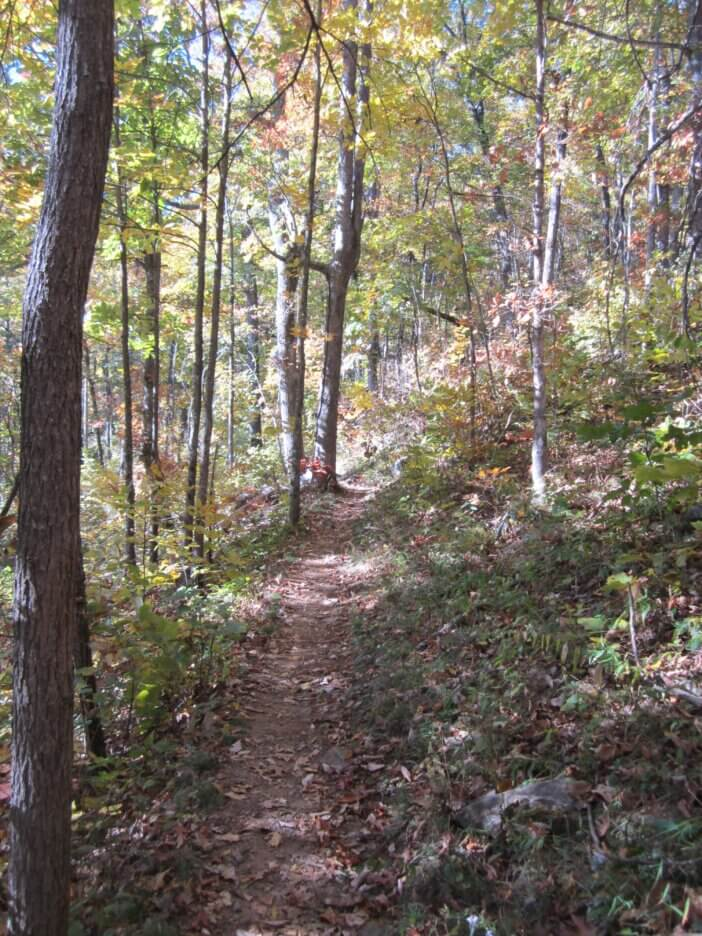 Cooper Gap to Woody Gap On The Appalachian Trail 2