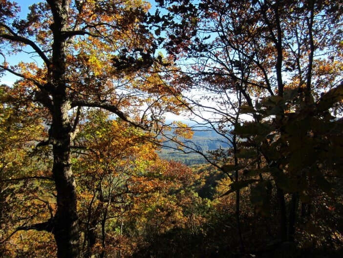 Cooper Gap to Woody Gap On The Appalachian Trail 3